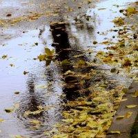 Настроение - дождь... :: Кулага Андрей Андреевич