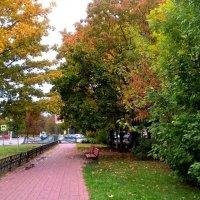 В мой город пришла осень :: Елена Семигина