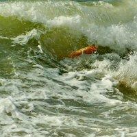 Море :: - Derjavin -