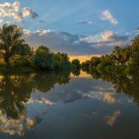 Ивы на берегу реки :: Фёдор. Лашков