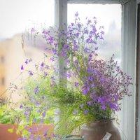 Случайная композиция на окне :: Сергей Спиридонов