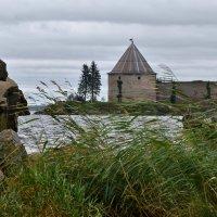 У стен  крепости :: Ирина Ярцева