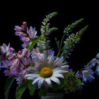 полевые цветы :: Алексей