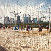 Пляжный волейбол :: Олег Чемоданов