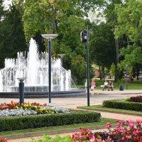 Поющий фонтан :: Николай Танаев