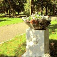 В старом парке пронзительно тихо :: Людмила
