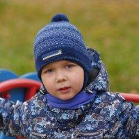Осеннее настроение под скрип качели и облетающих листьев :: Александр