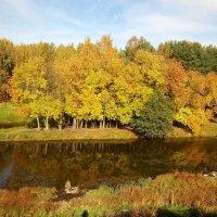 Осень листьями метёт… вьюгой золотистою… Листьев медленный полёт… да на воду чистую… :: Елена Павлова (Смолова)