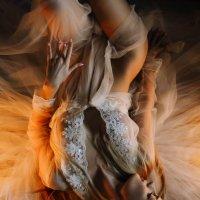 Страсть и нежность :: Наталия Шестакова