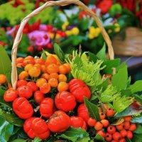 Осень в корзинке :: Natali Positive