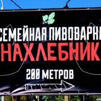 Чужие нахлебники не нужны! :: Нина Бутко