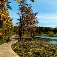Колдовское озеро. :: Yuri Chudnovetz