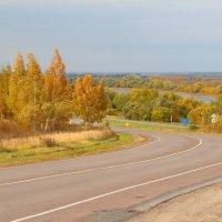 Дорога в Осень :: Надежда Постникова