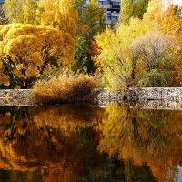 Осень золотая :: Raduzka (Надежда Веркина)
