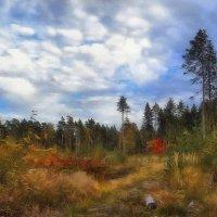 Картинная осень :: Алексей (GraAl)