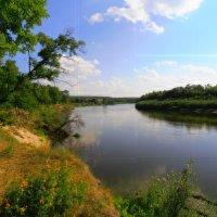 Река Сура :: Людмила И.