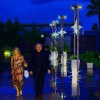 Красивая пара. :: Ариэль Volodkova