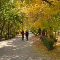 Осенний парк :: Александр