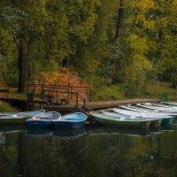 Тихая грусть. :: Олег Бабурин
