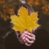 Золотая осень :: Натали