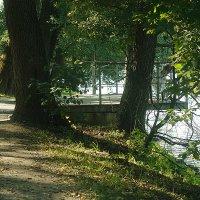В парке :: Ирина Татьяничева