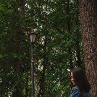 Парк :: Оксана Баллыева