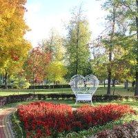 Сердце осени в Твери :: Виктор Калабухов