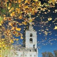 Осенняя фантазия, отражения Петропавловского парка Ярославля :: Николай Белавин