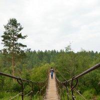 Подвесной мост :: Владимир VS