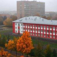 Туманная октябрьская осень :: Alexander Royvels