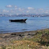 Корейские рыбаки оккупировали воды Приморья :: Эдуард Куклин