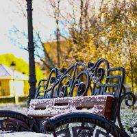 Снег в парке :: astanafoto kazakhstan