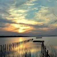 Тихий вечер на озере :: Ольга Голубева