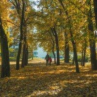 Прогулка по осеннему городу (4) :: Виталий