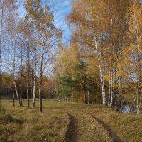 Прогулка вдоль берега Вори :: Татьяна Георгиевна