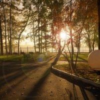 Осень :: Мария Телегина