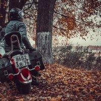 Провожая осень.. :: Макс Беккер