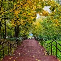 Осень в усадьбе Тимохово :: Viacheslav