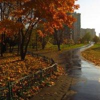 Экватор осени :: Андрей Лукьянов