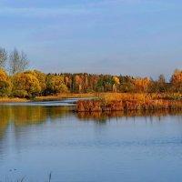 Яркие краски осени :: Лара Симонова
