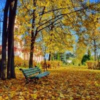 Старая скамейка :: Olcen Len