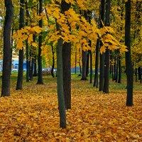 про осень... :: Виктория Колпакова