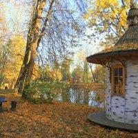 Осень в Павловске :: Валентина