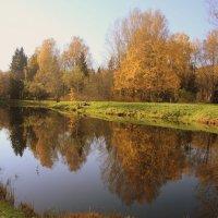 В старом парке царствовала осень... :: Валентина