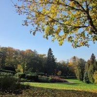 Осень в парке Кадриорг :: veera (veerra)