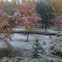 первый снег :: Горкун Ольга Николаевна