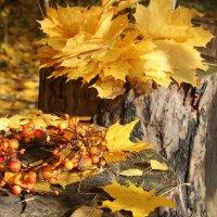 Золотая осень. :: Лариса Исаева