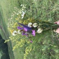 Flowers :: Эвелина Хамидуллина