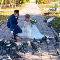 Любовь и голуби! :: Светлана Бурлина