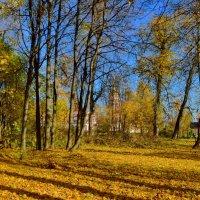 Алтуфьевская осень :: Olcen Len